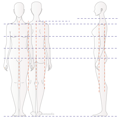 Medidas anatomicas Body measurements