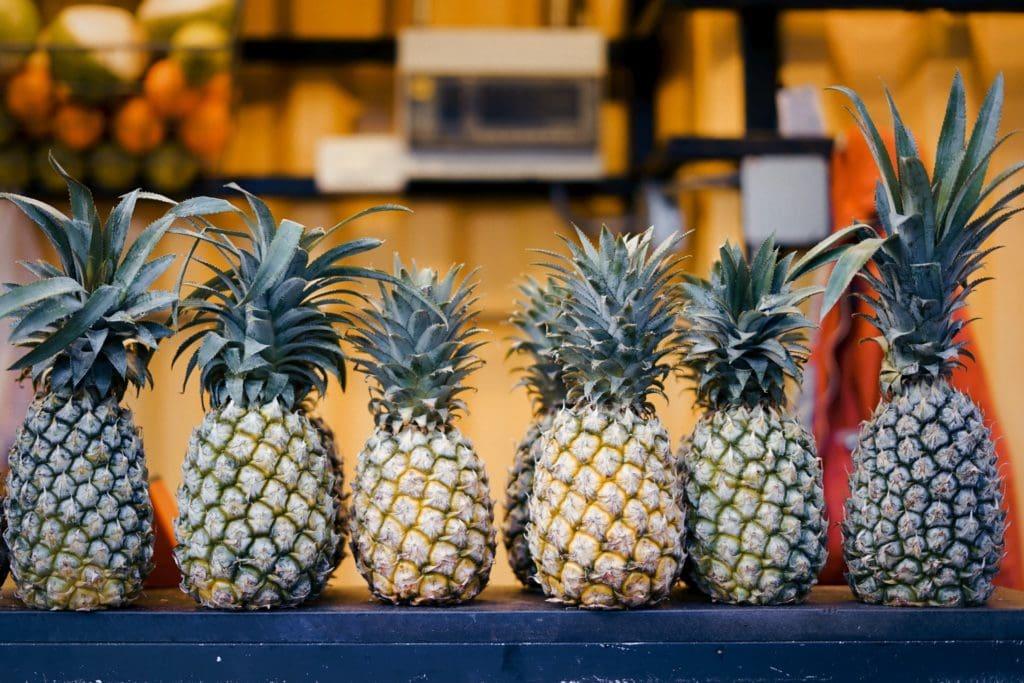 10 tejidos sostenibles procedentes de plantas y alimentos
