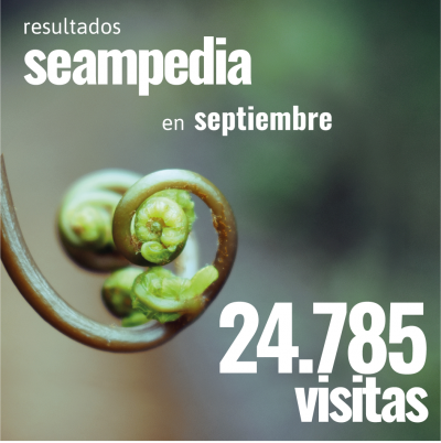 Resultados mes de septiembre