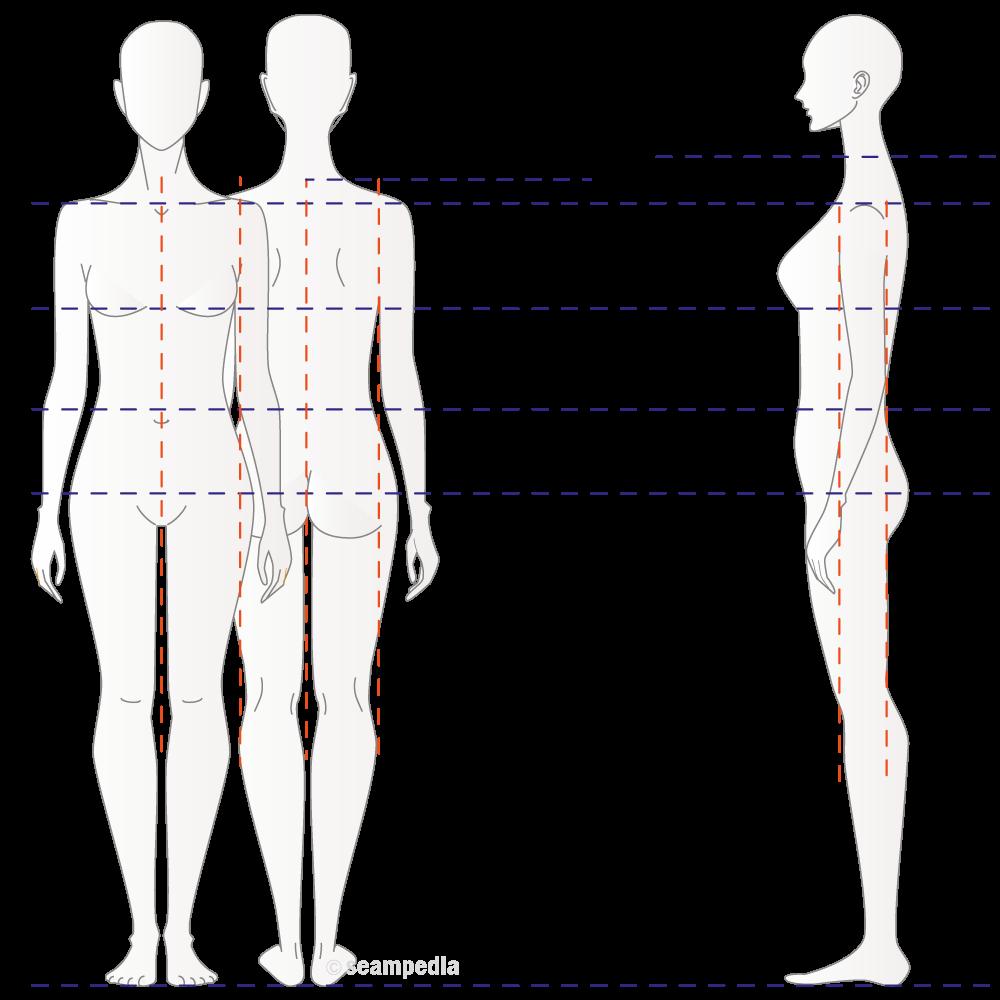 Medidas anatomicas - seampedia, enciclopedia tecnología de la moda